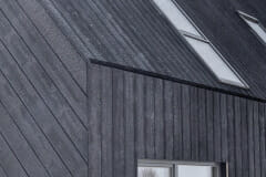 DARKSIDEWOOD_Egle_Carbon-